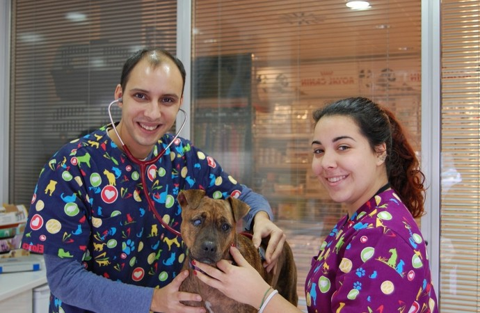 Centre Veterinari Calp, una moderna clínica de  VETCLINICS Technological Pet Care