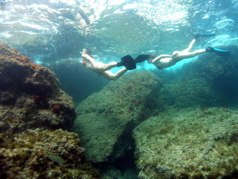 Guía snorkel