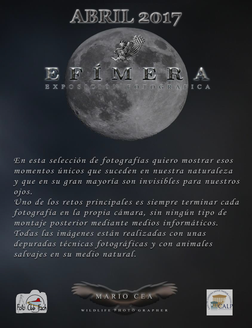 Expo Mario Cea-2