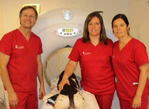 VETCLINICS dispone del primer escáner veterinario de la Marina Alta