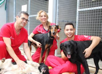 La labor social de VETCLINICS Technological Pet Care