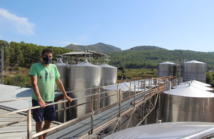 Bodegas Xaló concluye la campaña de este año con una cosecha de gran calidad