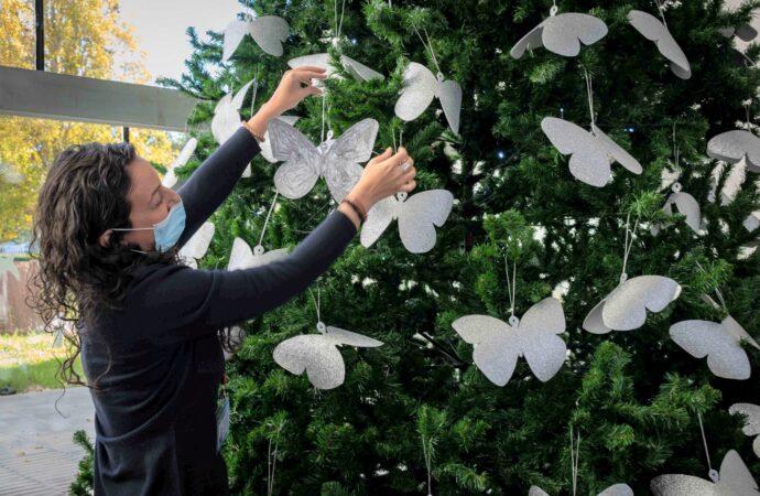 Mariposas iluminarán el árbol de Navidad del Hospital de Dénia para homenajear a los fallecidos por Covid