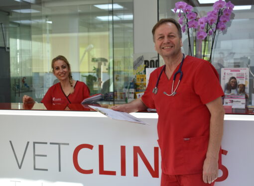 VetClinics, especialidades veterinarias para las dos marinas